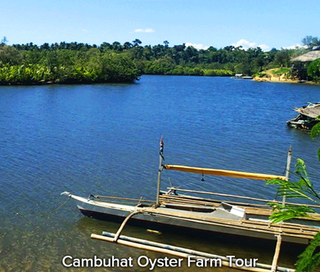 Cambuhat-Oyster-Farm-Tour.png