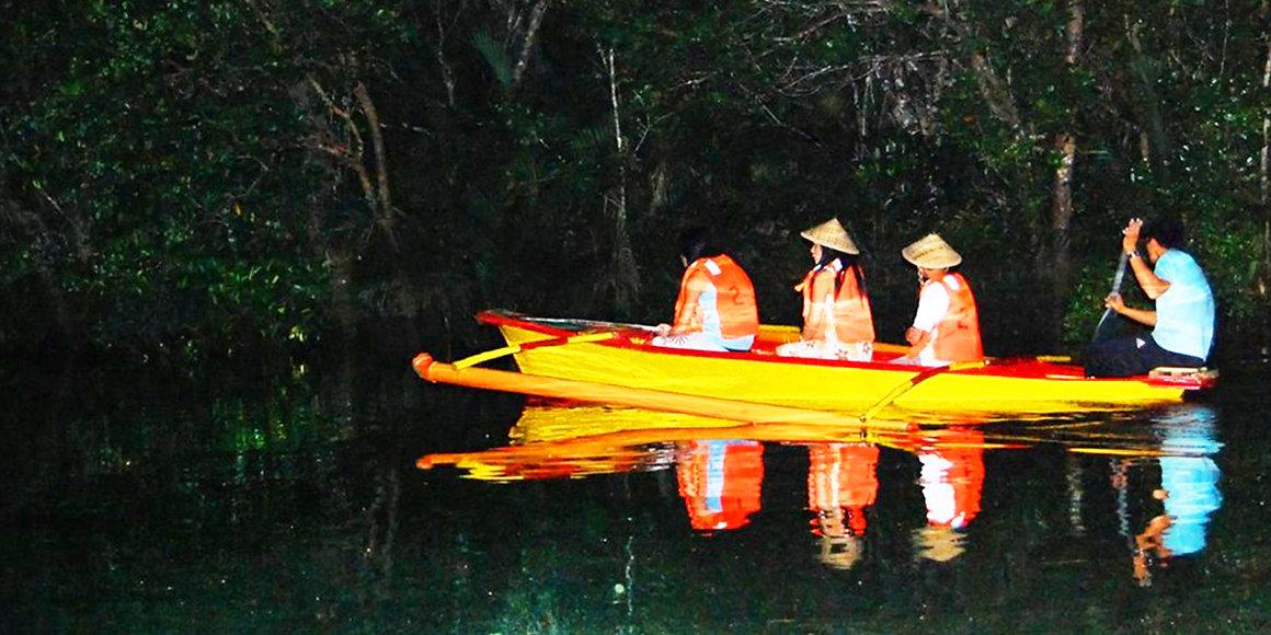 firefly watching iwahig river cruise