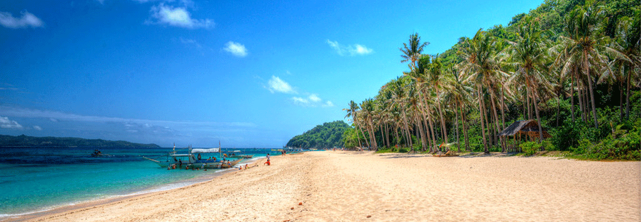 Beach-and-Island-Tours---Header.png