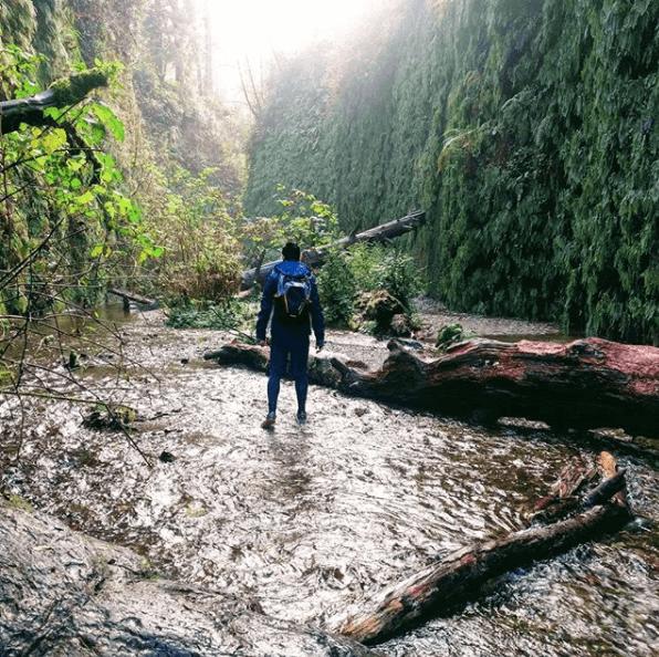 Redwood National Park, West Coast USA