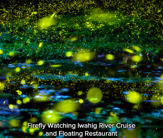 Firefly-Watching-Iwahig-River-Cruise-and