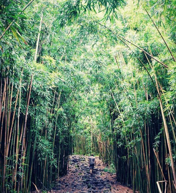 Haleakala National Park, Hawaii USA