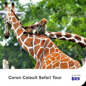 Coron-Calauit-Safari-Tour.png
