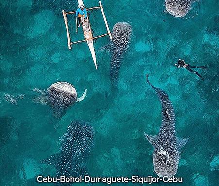 Cebu-Bohol-Dumaguete-Siquijor-Cebu.png
