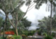 P01-137 Dameisha Seaside Park_Image_05_L