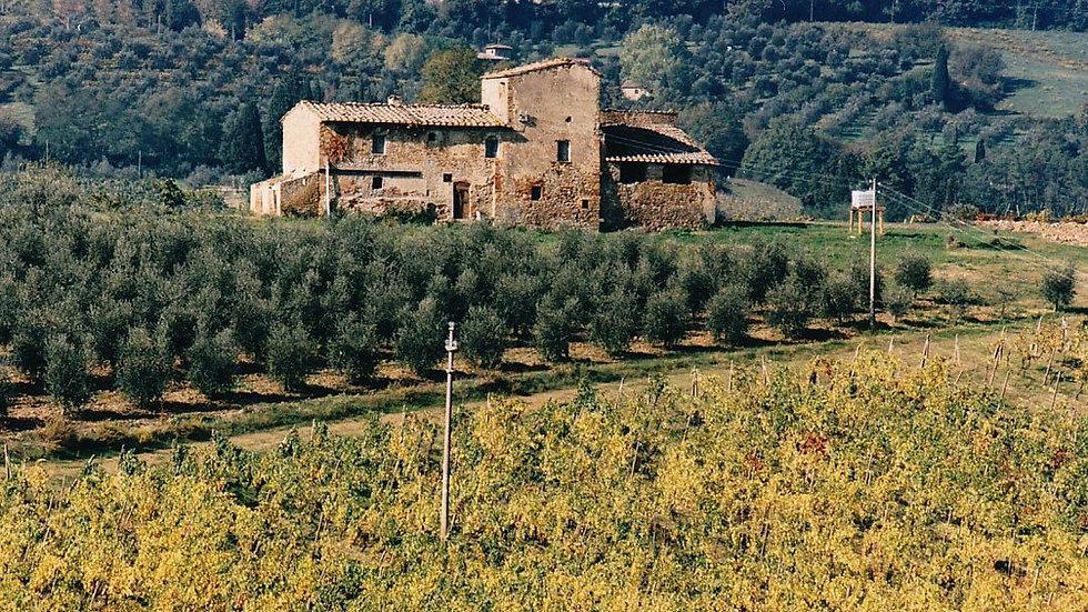 tuscan-villa-before-renovation-marronaia