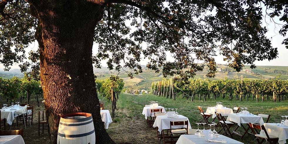 Cena tra i filari in Oltrepò