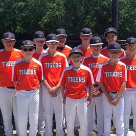 12u tigers