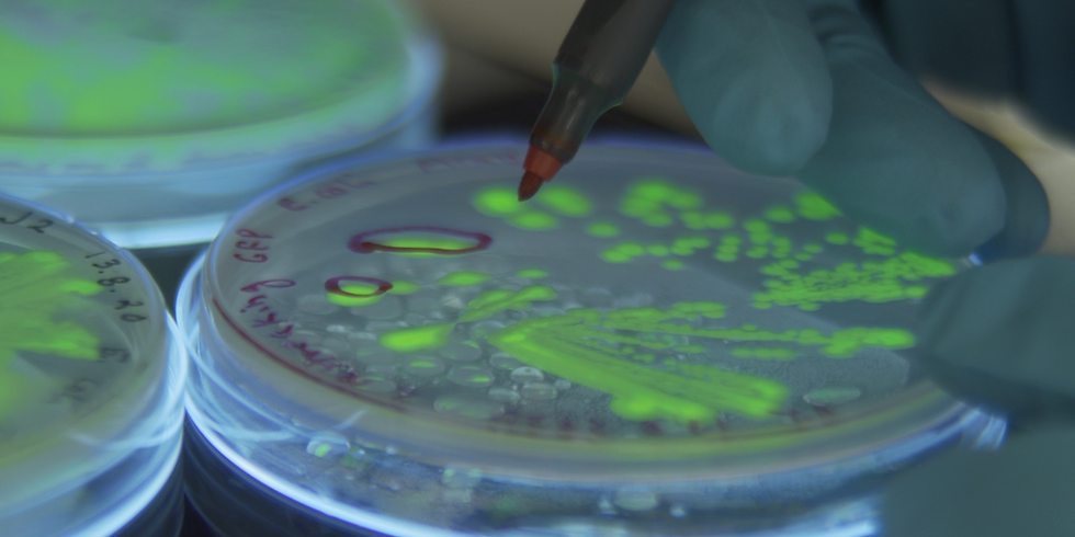 An Investor event  on Synthetic Biology