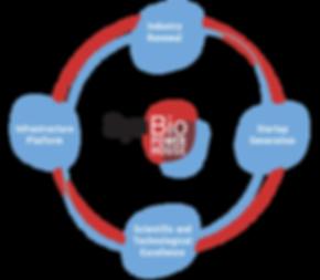 ekosysteemi_kaavio2.png