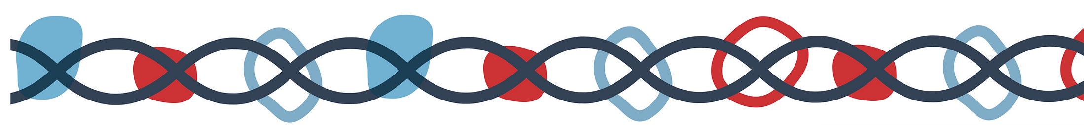 CYSS_DNA_LONG.png