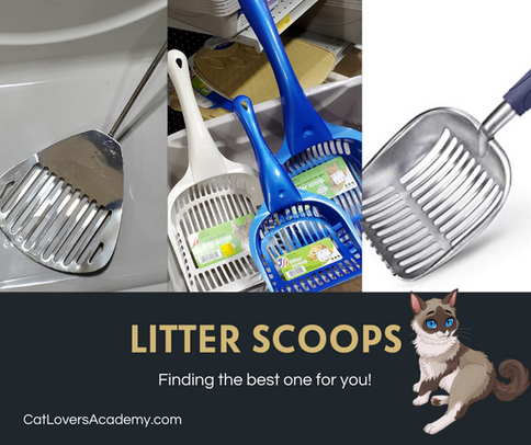 Litter Scoops.png
