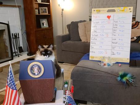 Meet the Feline Presidential Candidates