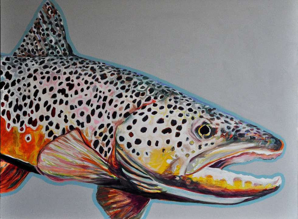 Henry's Fork Brown Trout, 2018
