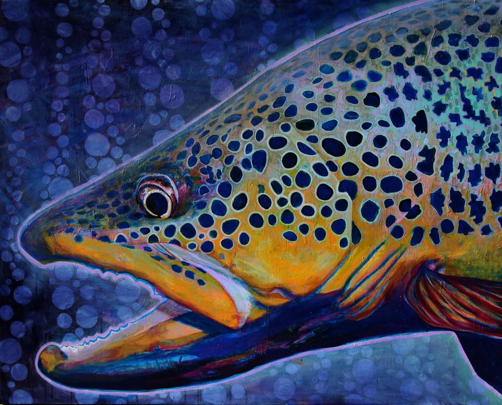 Blue Dot Brown Trout, 2019