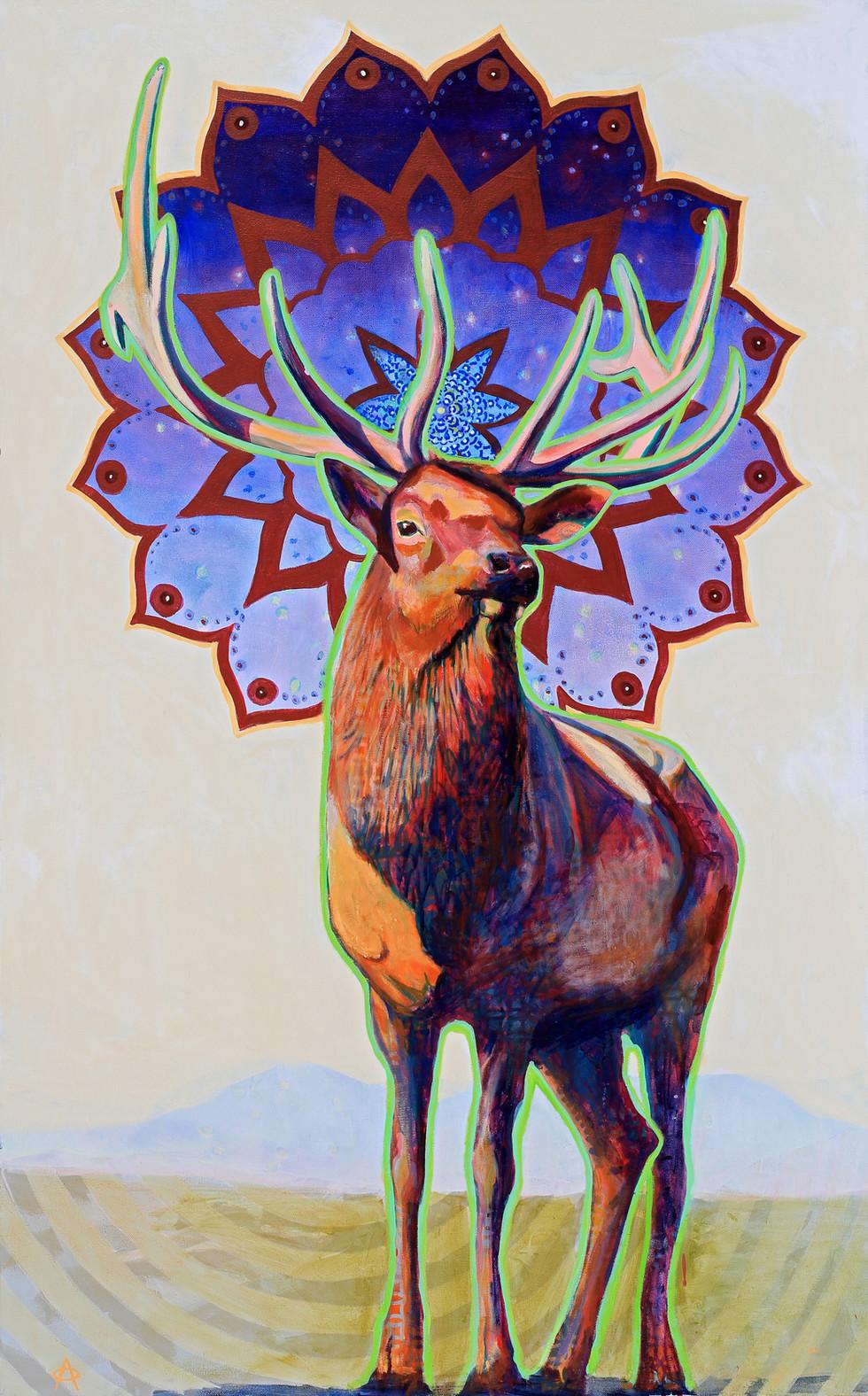 Elk Mandala, 2019