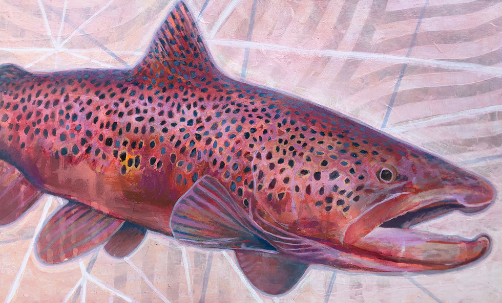 Red Brown Trout, 2019