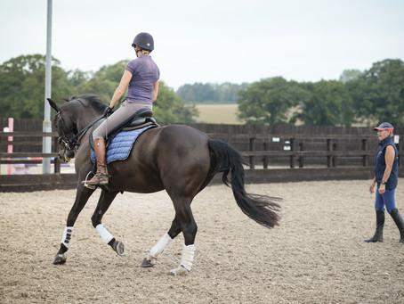 BLOG 5: HORSE CLINICS