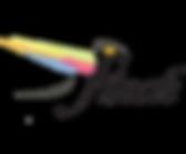 Debt2Dreams_Logo2 (1).png