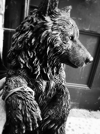 Dave the Bear