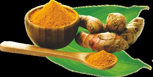 Turmeric Powder-Curcuma longa Powder and ginger