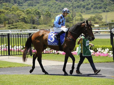 Diviner delivers for Equiano