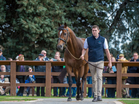 HIGHLAND REEL: A REFLECTION OF HIS FAMOUS FATHER
