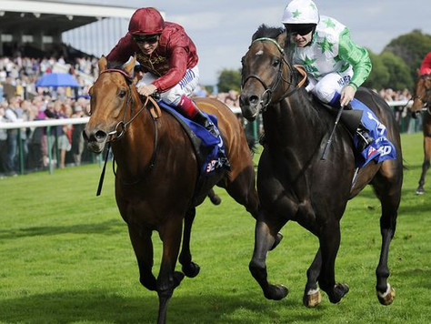 Strath Burn set for G1 British Champions Sprint