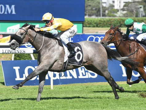 Swettenham graduate's Group 2 success is Pure Joy