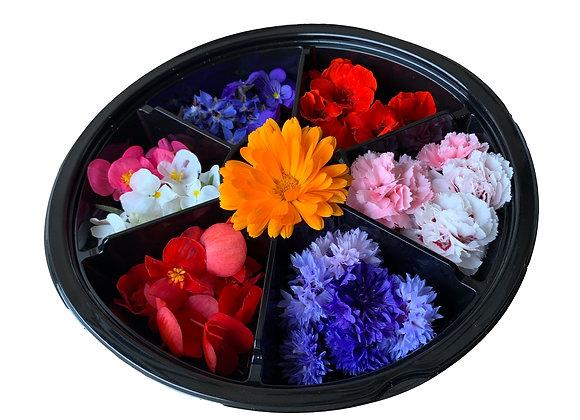 Edible Flower Selection