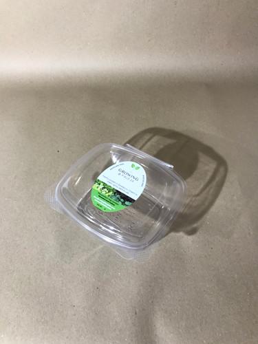Medium Clear Tub