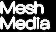 Mesh Media Logo