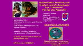 Domingo 13 de agosto - Actividad Grupo Scout