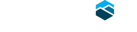 blm_logo_reversed.png