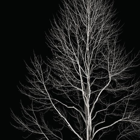 """Meditation #3"", 2004, by Ryan J. Bush"