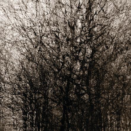 """Memoria #14"", 2011, by Ryan J. Bush"