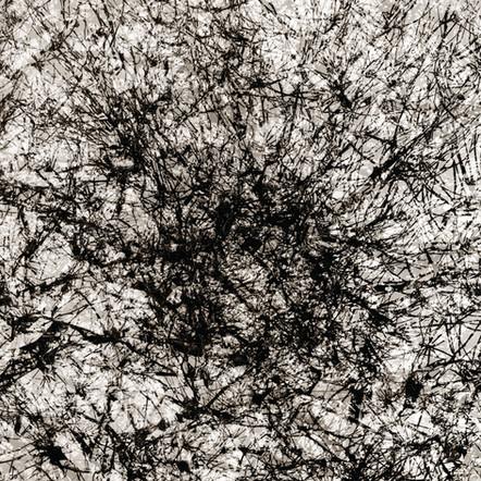 """Memoria #19"", 2011, by Ryan J. Bush"