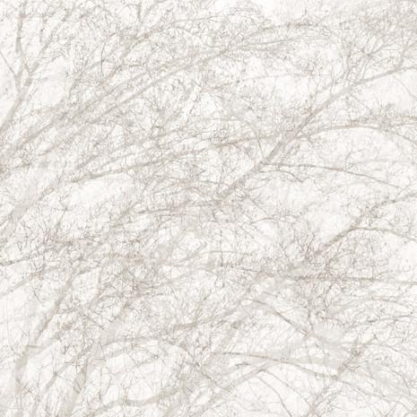 """Memoria #29"", 2013, by Ryan J. Bush"