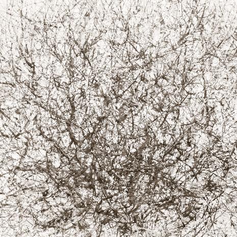 """Memoria #23"", 2012, by Ryan J. Bush"