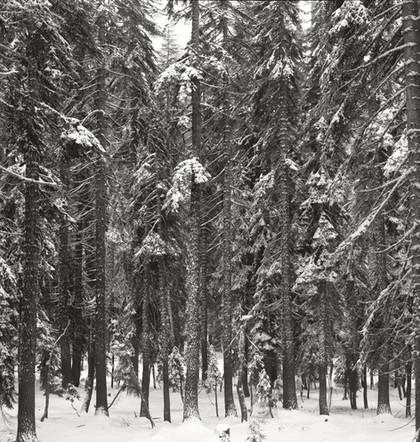 """Mountain Stillnesss #5"", 2007, by Ryan J. Bush"