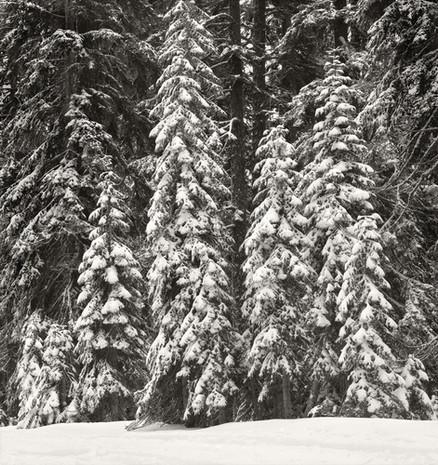 """Mountain Stillnesss #3"", 2007, by Ryan J. Bush"