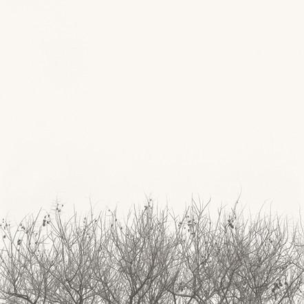 """The Beginning"", 2004, by Ryan J. Bush"