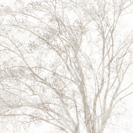 """Memoria #3"", 2011, by Ryan J. Bush"