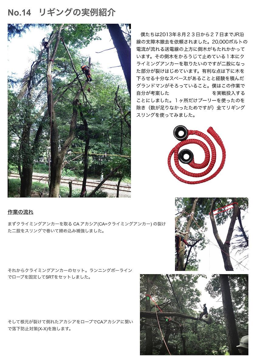 rigging_JP_1.jpg