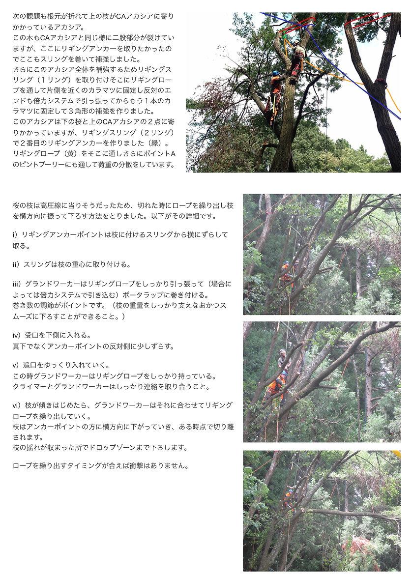 rigging_JP_3.jpg