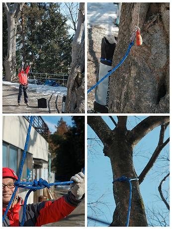 climbing_system_24.jpg