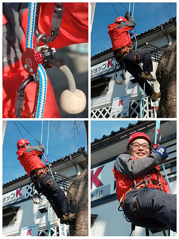 climbing_system_5.jpg