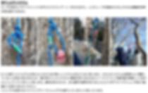 スクリーンショット 2019-05-03 11.29.23.png
