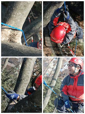 climbing_system_27.jpg