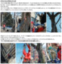 スクリーンショット 2019-05-03 11.28.10.png